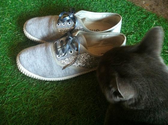 BBNN_glitter_sneakers_7