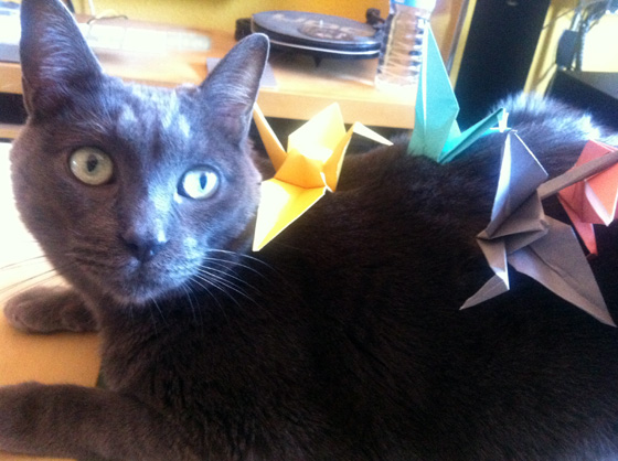 BBNN_origami_crane2
