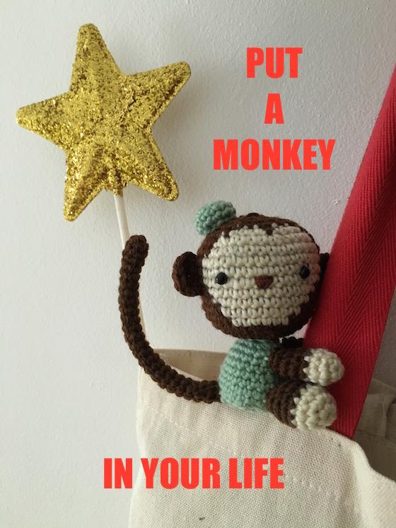 bbnn_monkey4