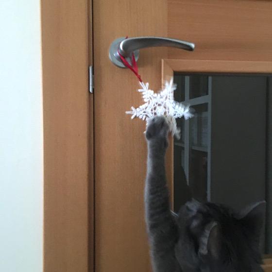big_snowflake_door2